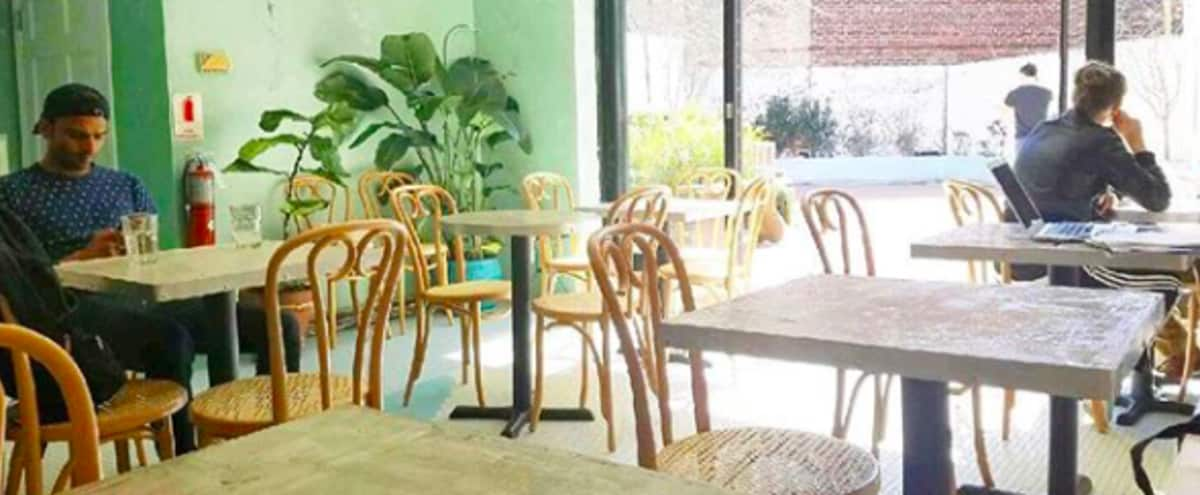 Cafe/Bar with Huge Outdoor Space in Brooklyn Hero Image in Bedford-Stuyvesant, Brooklyn, NY