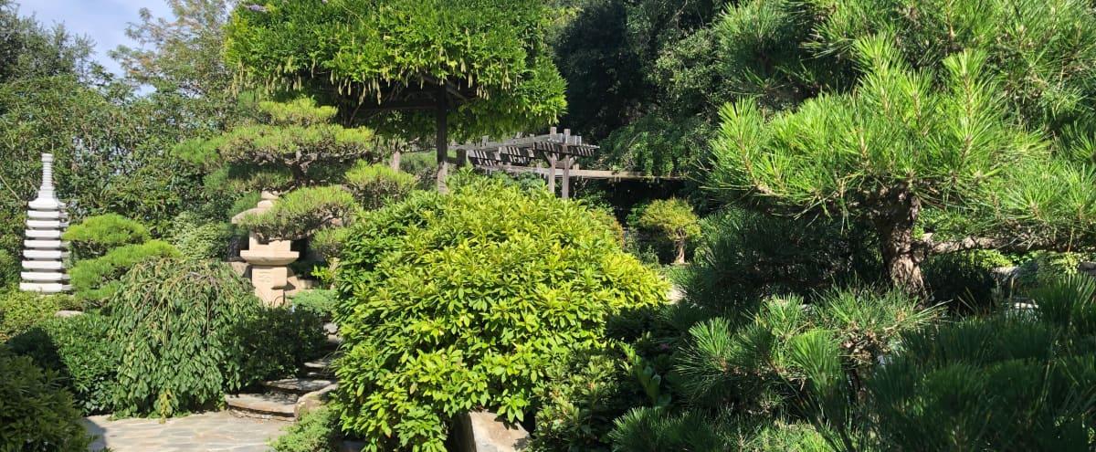 Otherworldly Private Japanese Garden in Los Angeles Hero Image in Bel Air, Los Angeles, CA