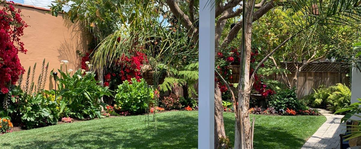 Mid City Backyard Oasis near Culver City Arts District in Los Angeles Hero Image in Mid City, Los Angeles, CA