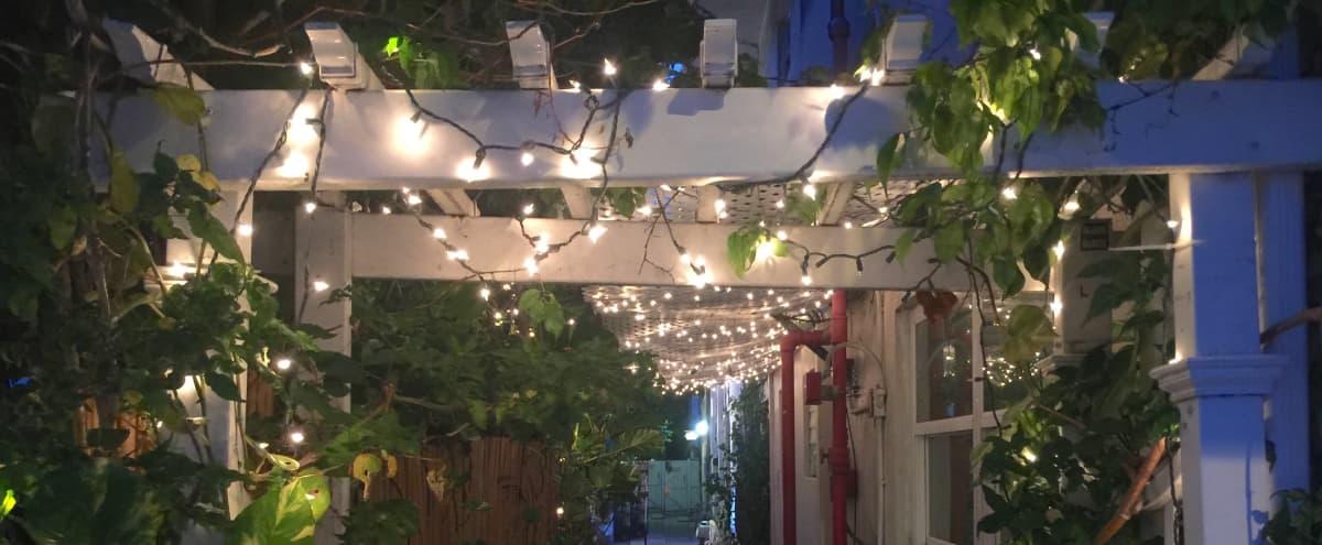 Outdoor Patio w/ Miami Vibes - Great for Photo/Film Shoots in Miami Beach Hero Image in West Avenue, Miami Beach, FL
