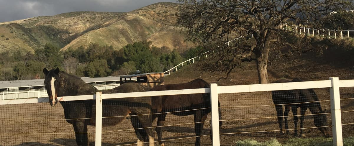 50 Acres of Mtns, Views, Horses, 2 Homes, and Almost Everything in Between in Simi Valley Hero Image in undefined, Simi Valley, CA