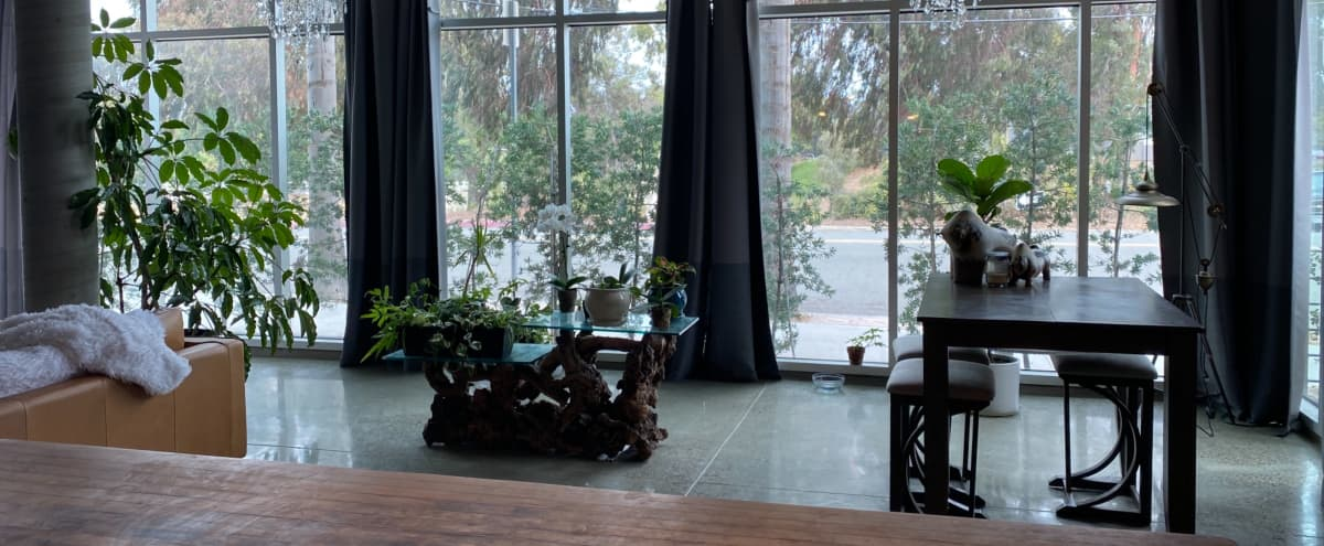 Green Loft Space with an Elegant Vibe in San Diego Hero Image in Hillcrest, San Diego, CA