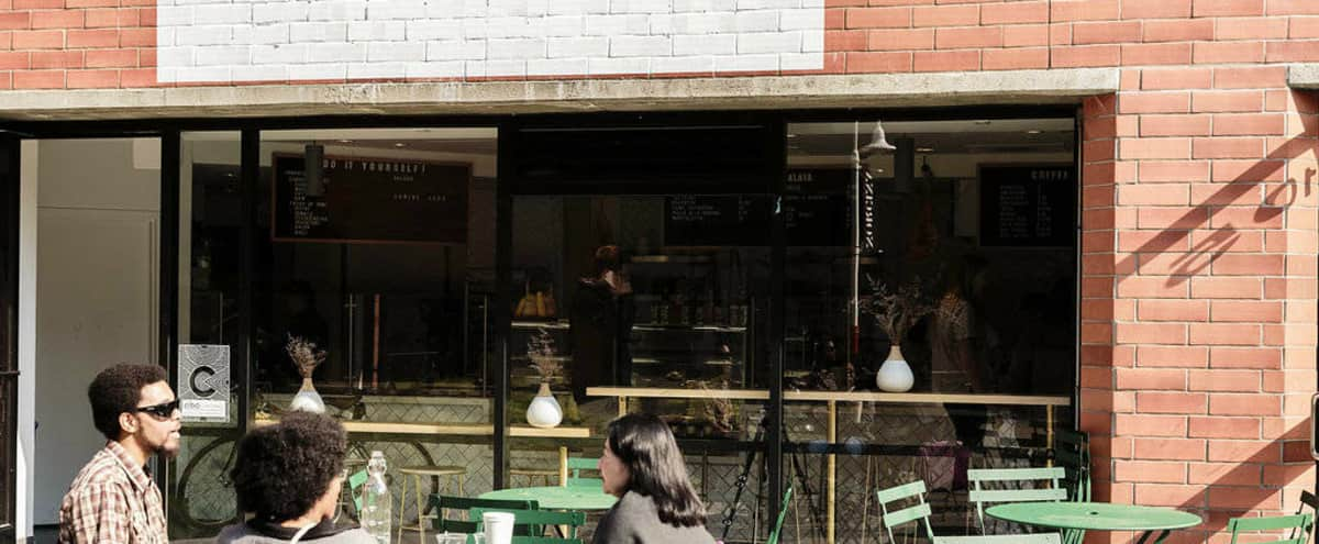 Modern Cafe / Meeting Space and Outdoor Patio in San Francisco Hero Image in Embarcadero, San Francisco, CA
