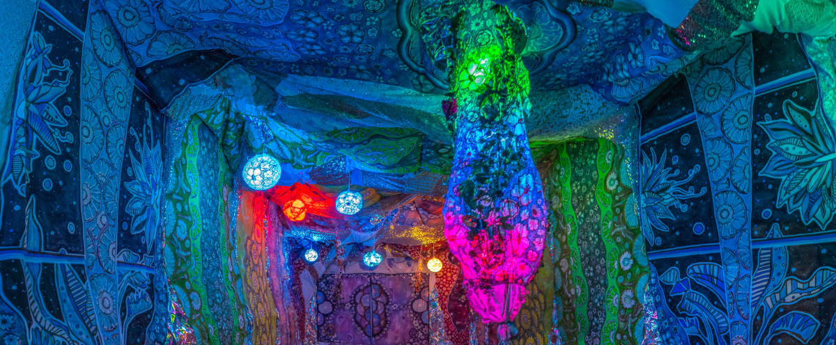 Visionary Hollywood Artist Installation - Immersive & Enveloping Dream-like Rainbow Flower World in Los Angeles Hero Image in Central LA, Los Angeles, CA
