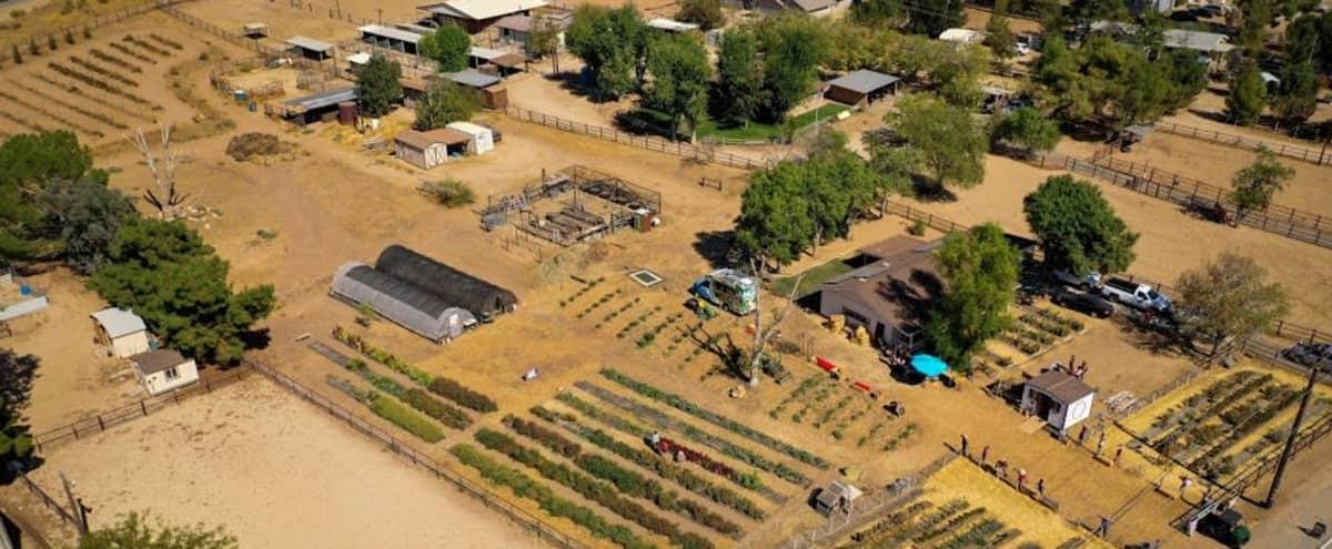 Family Farm in Rural LA County in Acton Hero Image in undefined, Acton, CA