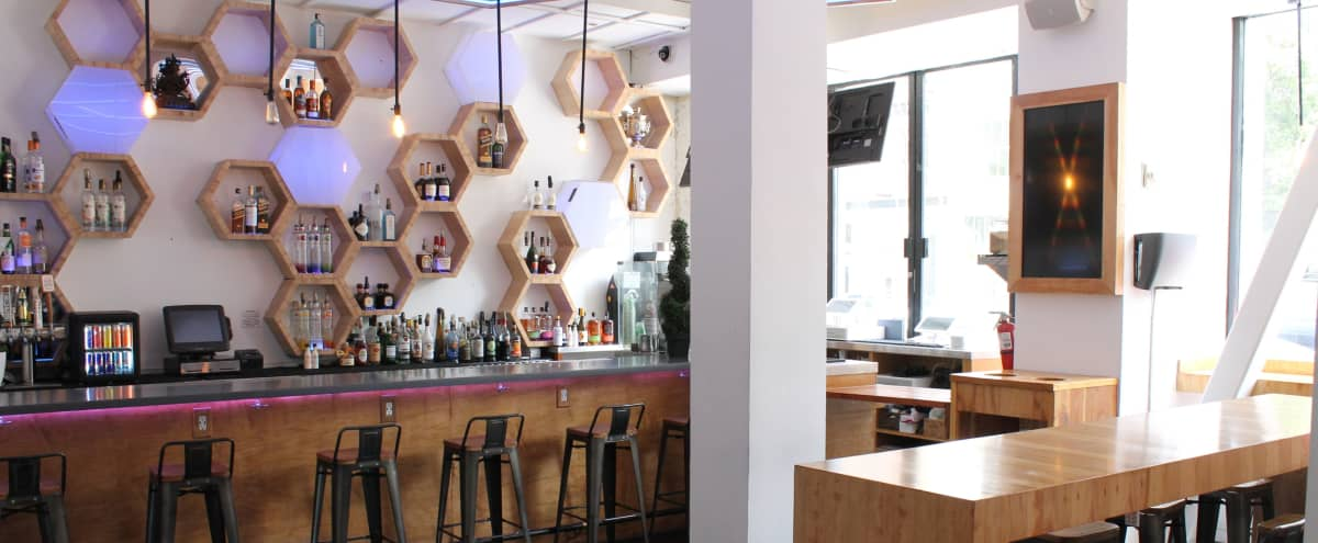 Natural Light - Cozy Cafe in San Francisco Hero Image in South of Market, San Francisco, CA