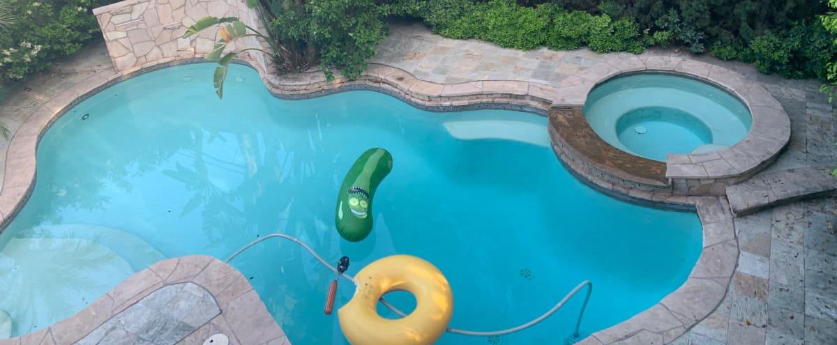 Tropical Pool Paradise in los angeles Hero Image in Los Feliz, los angeles, CA