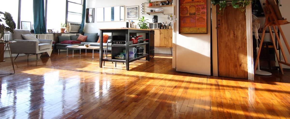 Beautiful & Bright Bushwick Artist's Loft in BROOKLYN Hero Image in Bushwick, BROOKLYN, NY