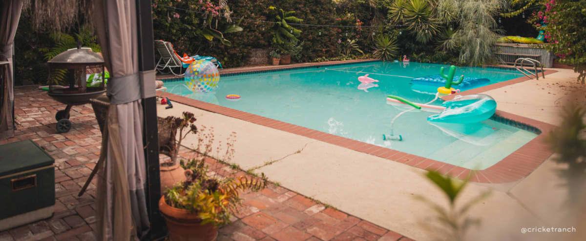 Cricket Ranch Bohemian Oasis Vintage Spanish Pool Home w/ Mustang & Private Yard in Van Nuys Hero Image in Van Nuys, Van Nuys, CA