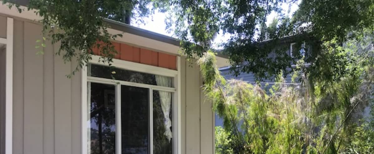 Hilltop mid century house minutes from downtown LA in Los Angeles Hero Image in Cypress Park, Los Angeles, CA