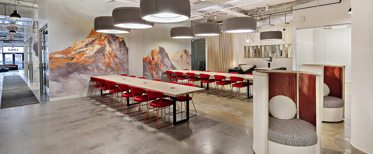 Premium Coworking Space - Spacious and Fully Equipped Event Lounge in Brooklyn Hero Image in Crown Heights, Brooklyn, NY