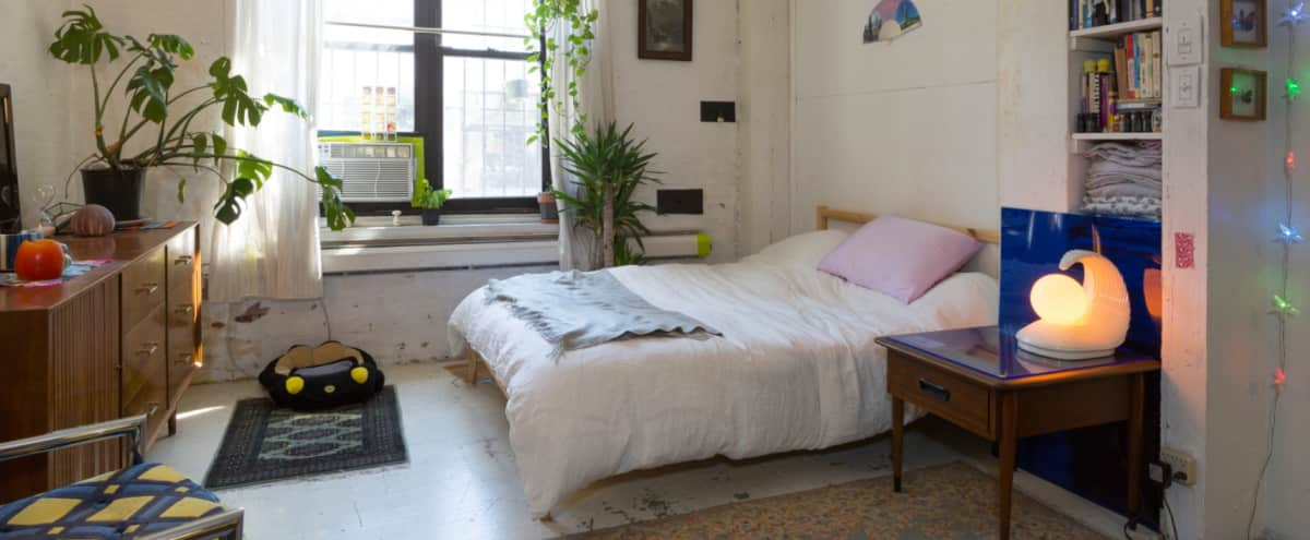 Eclectic & spacious loft studio apartment with high ceilings in Williamsburg in Brooklyn Hero Image in Williamsburg, Brooklyn, NY