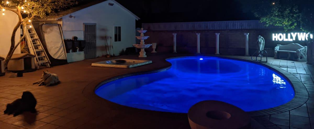Suburban Backyard with Exotic Lighting in North Hills Hero Image in North Hills, North Hills, CA
