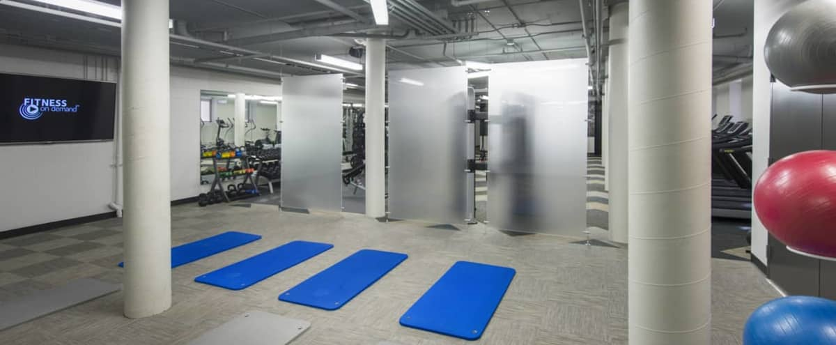 Yoga/Fitness Studio in the Fillmore Area in San Francisco Hero Image in Western Addition, San Francisco, CA