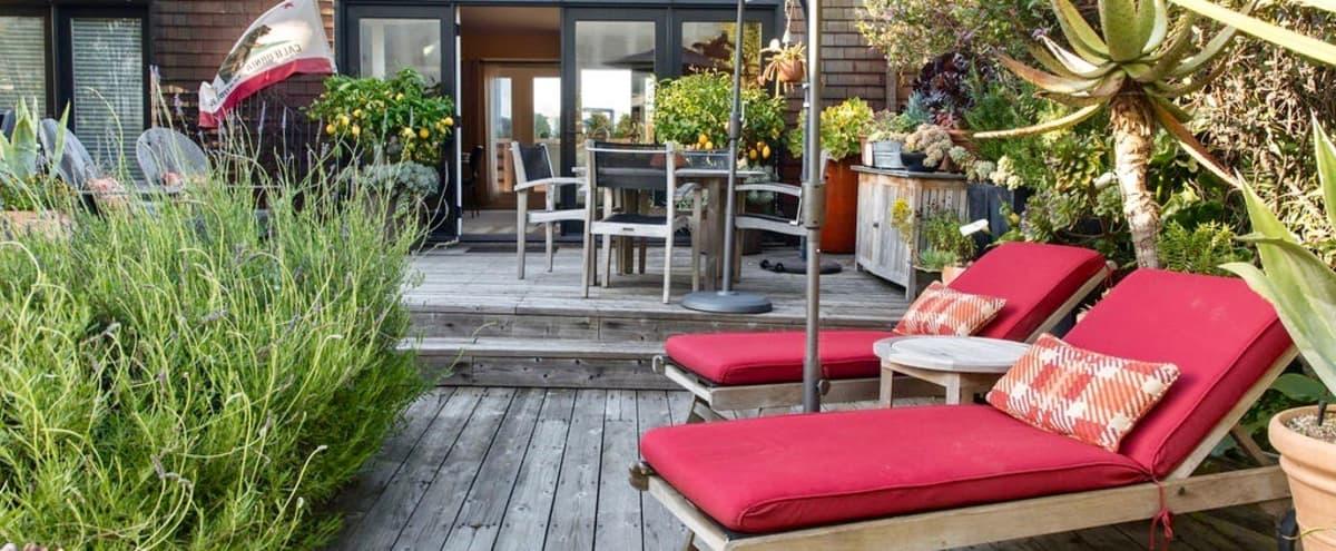 Potrero Hill Garden Pavilion in San Francisco Hero Image in Potrero Hill, San Francisco, CA