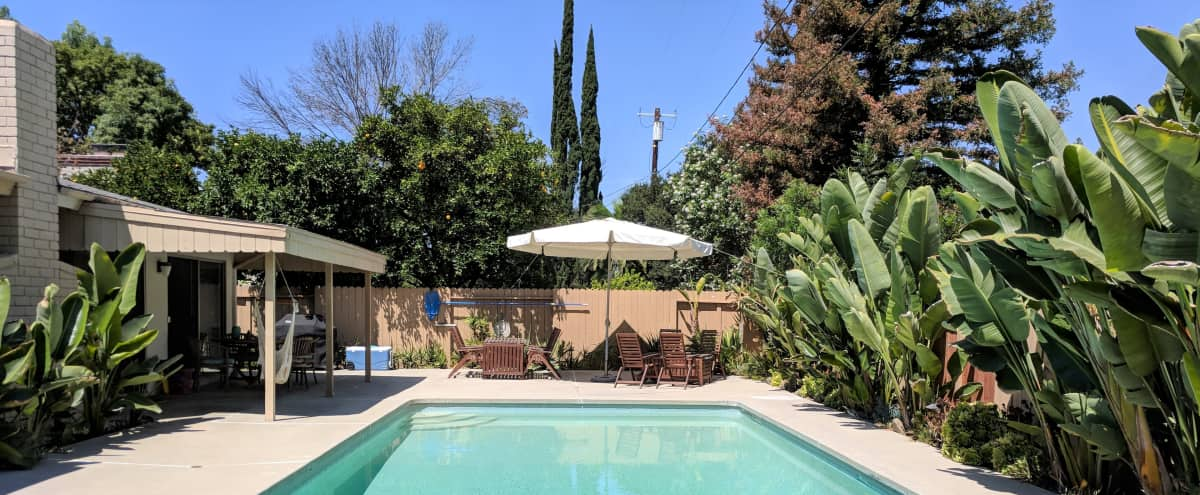 Suburban Mid-Century w/Pool, Boogie Nights Feel in Woodland Hills Hero Image in Woodland Hills, Woodland Hills, CA