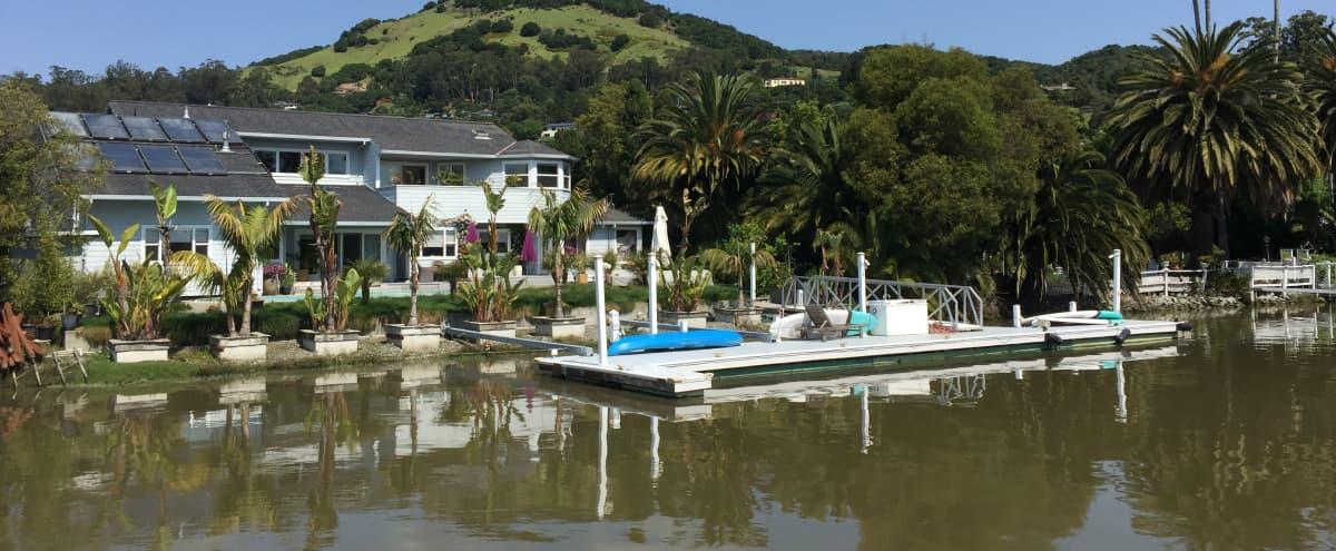 5000 Sq' WATERFRONT HOME w/Pool in SAN RAFAEL in san rafael Hero Image in undefined, san rafael, CA