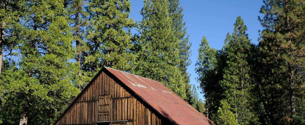 Restored 118 year old Barn and Apple Orchard, Gold Country Sierra Mountains with Redwood Trees. in Twain Harte Hero Image in undefined, Twain Harte, CA