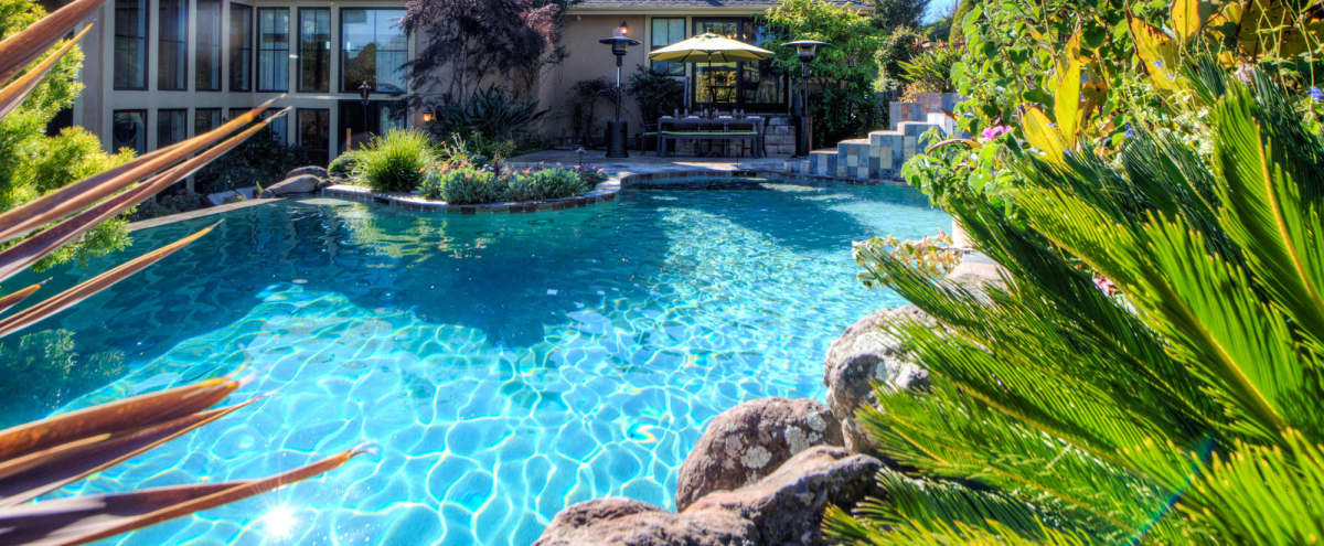 Great for off sight meeting - Luxury Villa in Novato, Ca approximately 35 minutes north of San Francisco in Novato Hero Image in undefined, Novato, CA