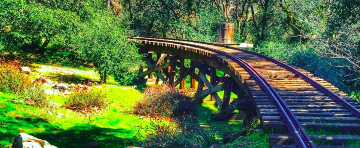 Komorebi - Light Through the Trees in Julian Hero Image in undefined, Julian, CA