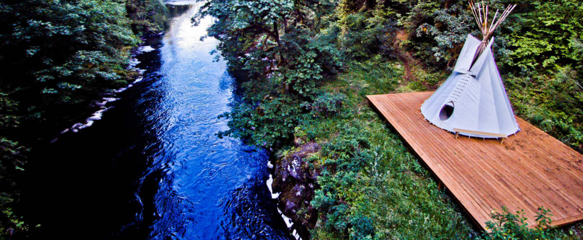 Pristine Forest Setting: River & Creek, Cabins and Trails in Molalla Hero Image in undefined, Molalla, OR