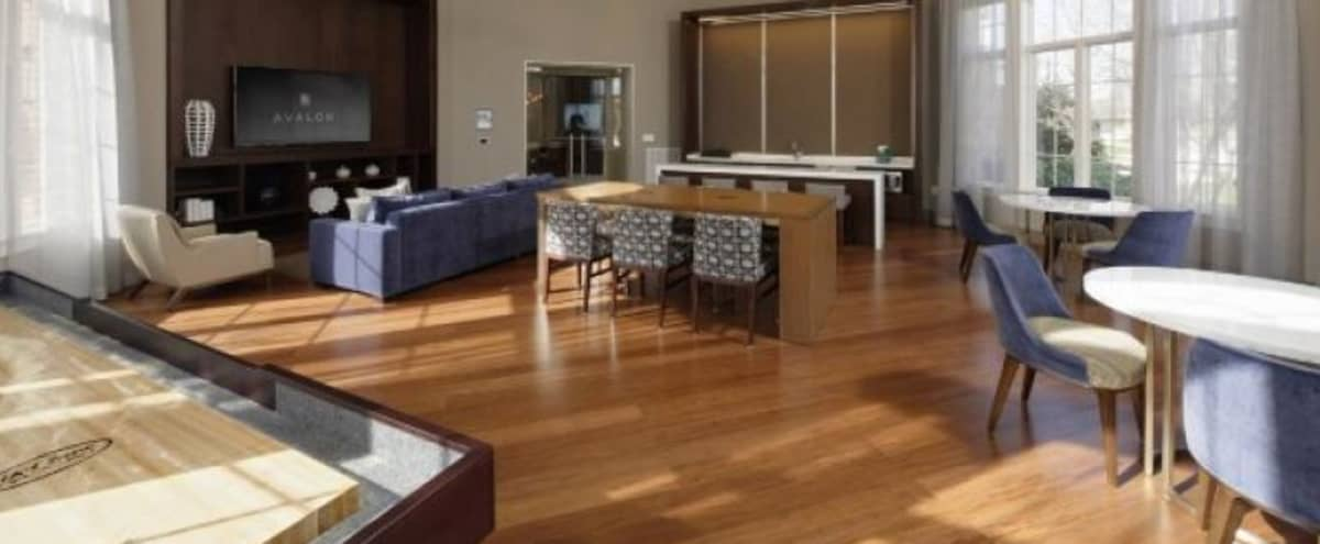 Spacious Lounge w/ Kitchenette Ready for Your Next Meeting or Event! in Rockville Hero Image in undefined, Rockville, MD