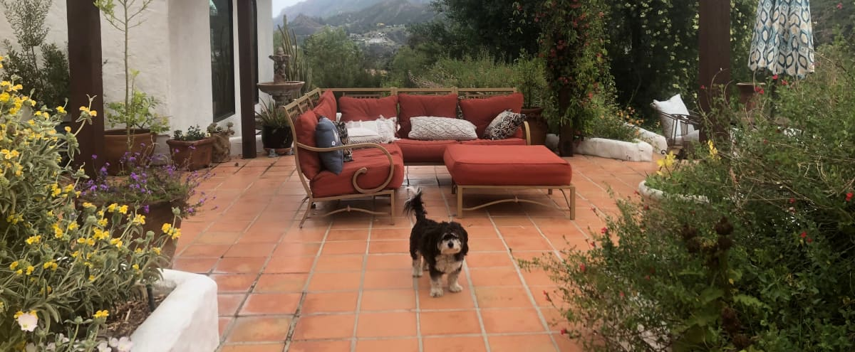 Artistic Mountain Refuge with Lush Gardens and Expansive Outdoor Living Spaces in Agoura Hero Image in undefined, Agoura, CA