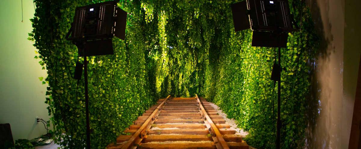 Downtown Green Vine Railroad Tunnel in Los Angeles Hero Image in Central LA, Los Angeles, CA