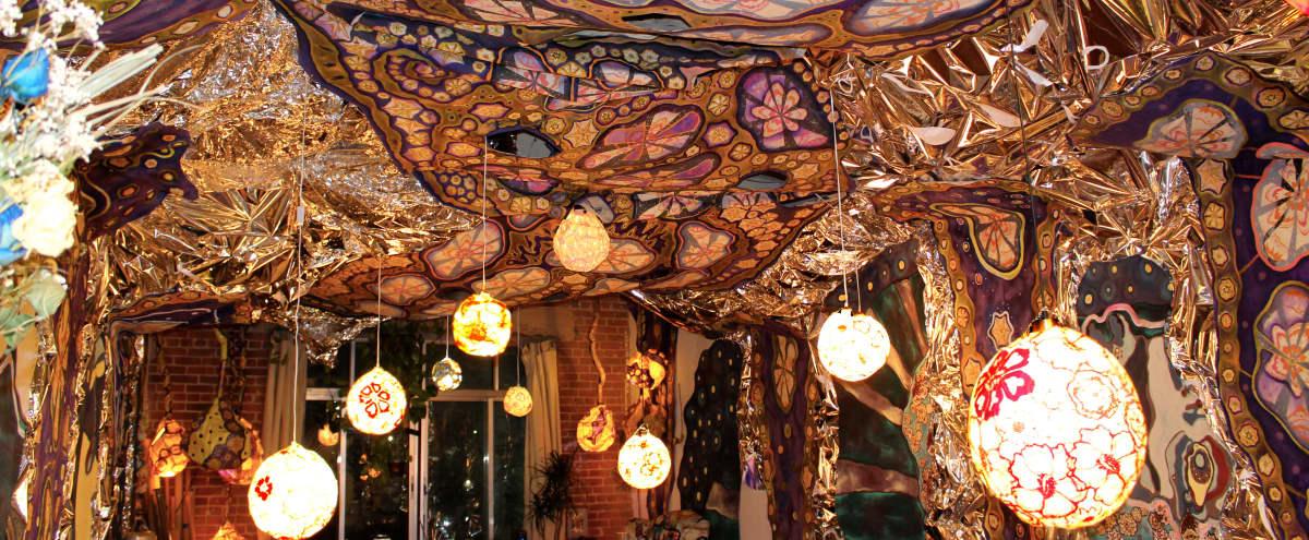 Magical & Immersive Art Installation DTLA Studio in Los Angeles Hero Image in Central LA, Los Angeles, CA
