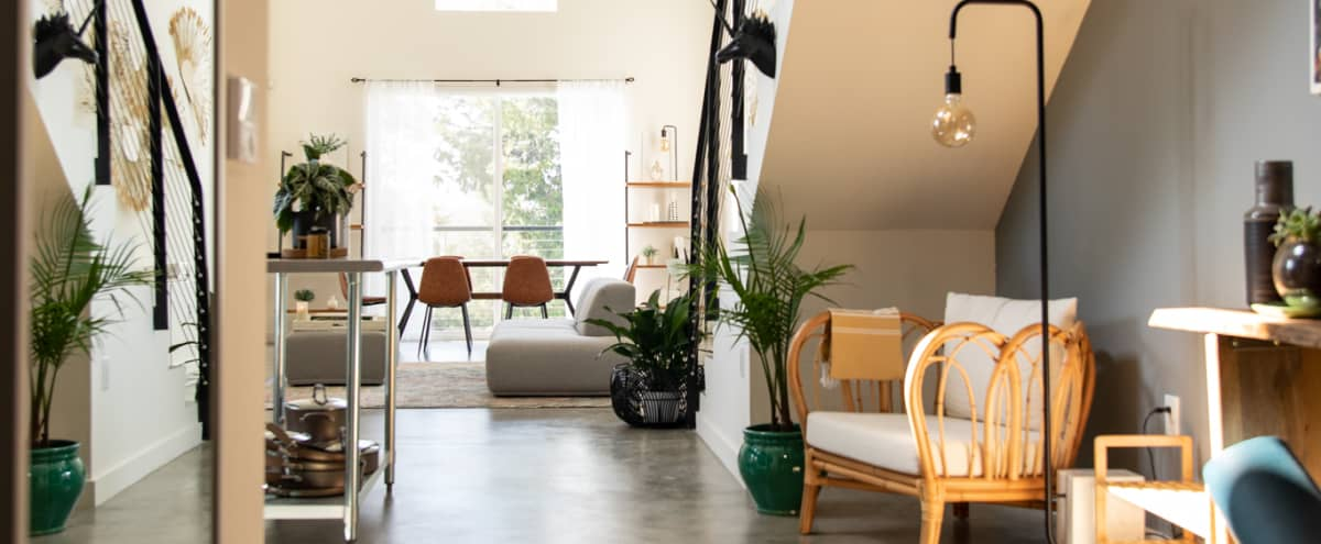 Bohemian-Inspired Contemporary Loft with Outdoor Patio in North Hollywood Hero Image in North Hollywood, North Hollywood, CA