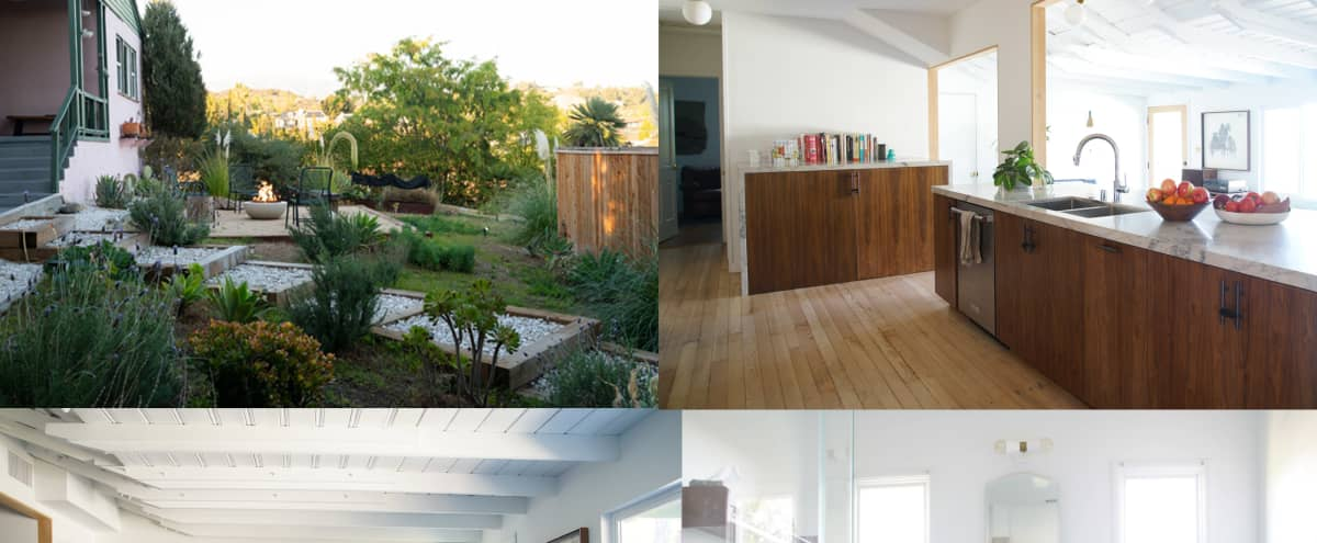 Large Hip Home with spacious yard & lots of light in Eagle Rock/Pasadena in Los Angeles Hero Image in Eagle Rock, Los Angeles, CA