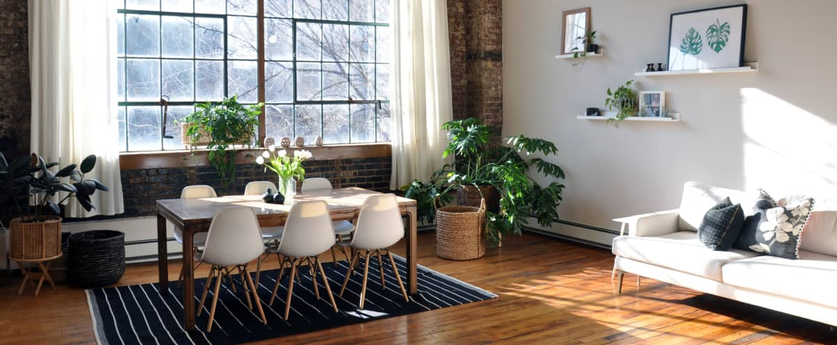 Brooklyn Oasis Loft with Huge Tree-Lined Windows for Photo Shoots, B-Roll + Holding Space in Brooklyn Hero Image in Clinton Hill, Brooklyn, NY