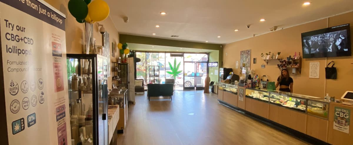 Modern, Open FLoor Plan Retail Shop with Displays in West Hollywood Hero Image in Central LA, West Hollywood, CA