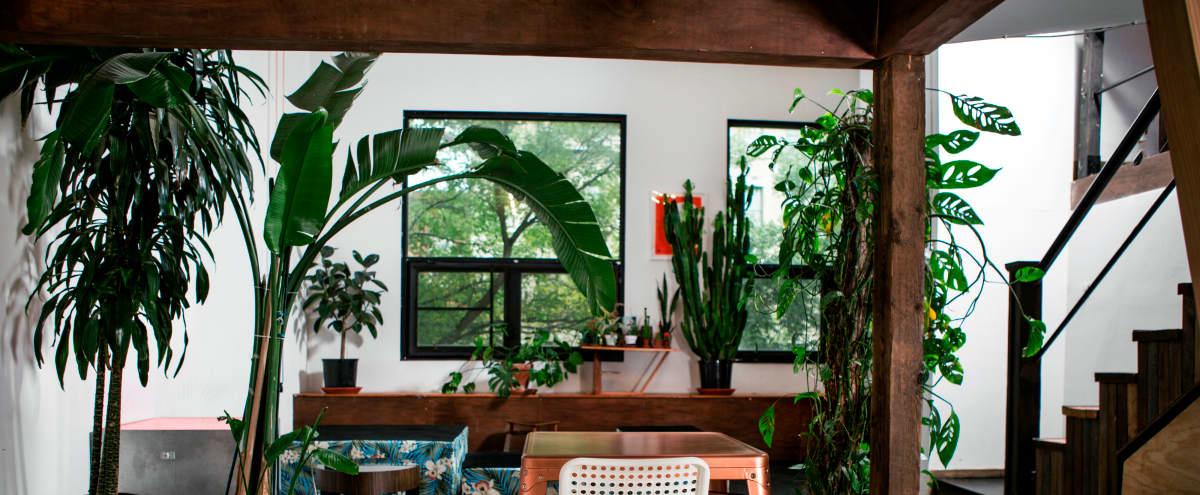 Loft Art Studio In Greenpoint 2 Open Levels, Great Light, Lots of Plants in Brooklyn Hero Image in Greenpoint, Brooklyn, NY