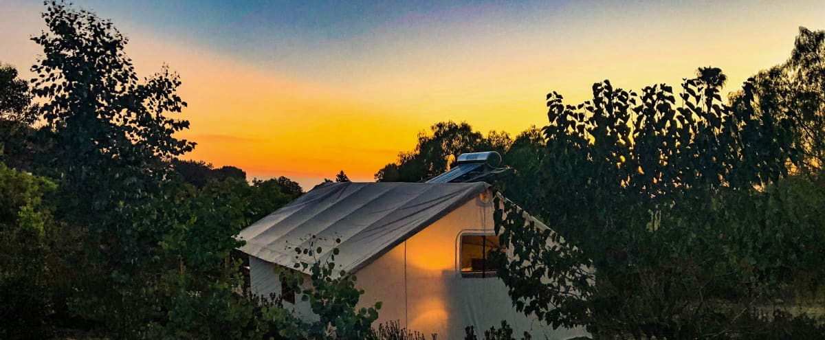 Safari Sunset Eco Glamping in VISTA Hero Image in undefined, VISTA, CA