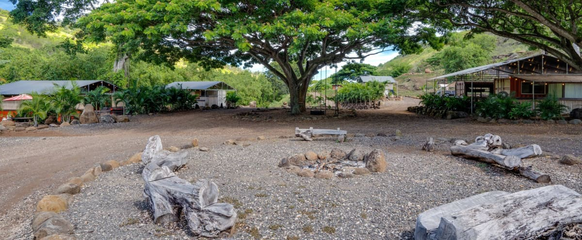 Private off the grid retreat with glamping cabins in Waialua Hero Image in North Shore, Waialua, HI