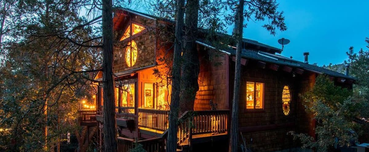 Magical Wellness Retreat Cabin in the Woods in Idyllwild Hero Image in undefined, Idyllwild, CA
