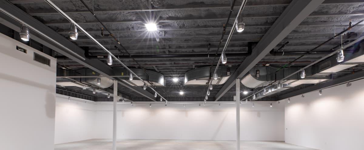 State of the art gallery space in Westport Hero Image in null, Westport, CT