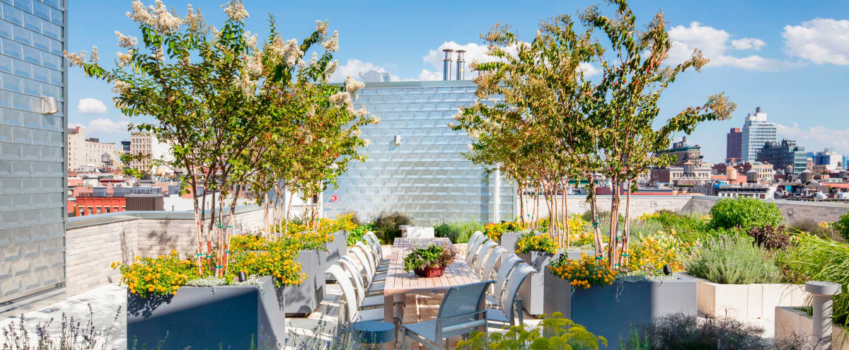 Breathtaking Outdoor/Indoor Space!! in New York Hero Image in Lower Manhattan, New York, NY