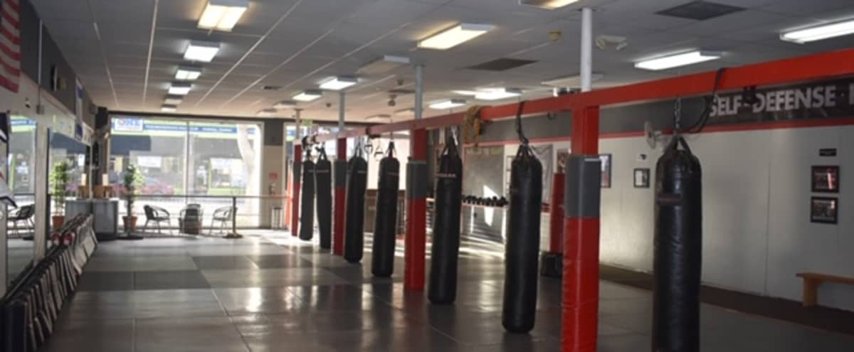 2,500 Sq. Ft. Spacious Fitness Studio in Albany Hero Image in undefined, Albany, CA