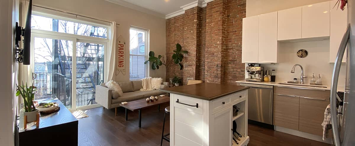 Modern Brownstone with Spacious Patio in Boston Hero Image in City Point, Boston, MA