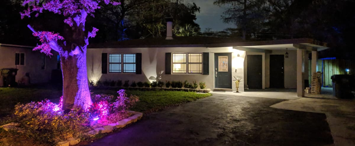 Mid Century Modern Production House Located in the Middle of a Real Forest in Heart of the City of Oakland Park in Oakland Park Hero Image in undefined, Oakland Park, FL