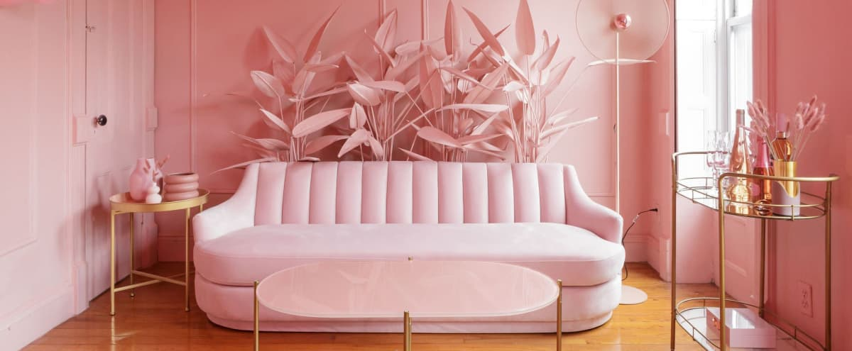 A Perfectly Pink Parlor in Brooklyn Hero Image in Stuyvesant Heights, Brooklyn, NY