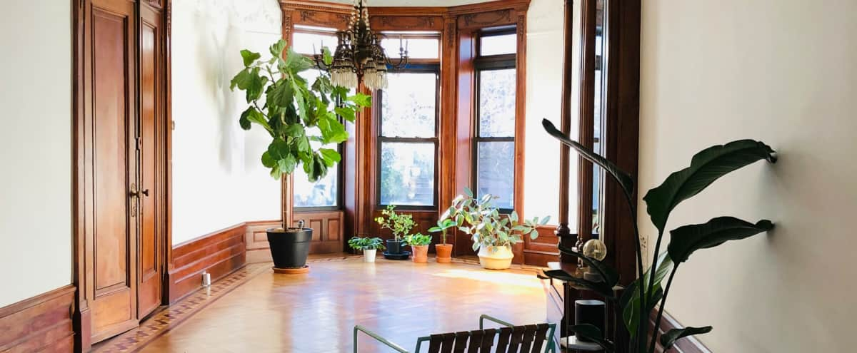Stunning Brooklyn Townhouse in Brooklyn Hero Image in Prospect Heights, Brooklyn, NY