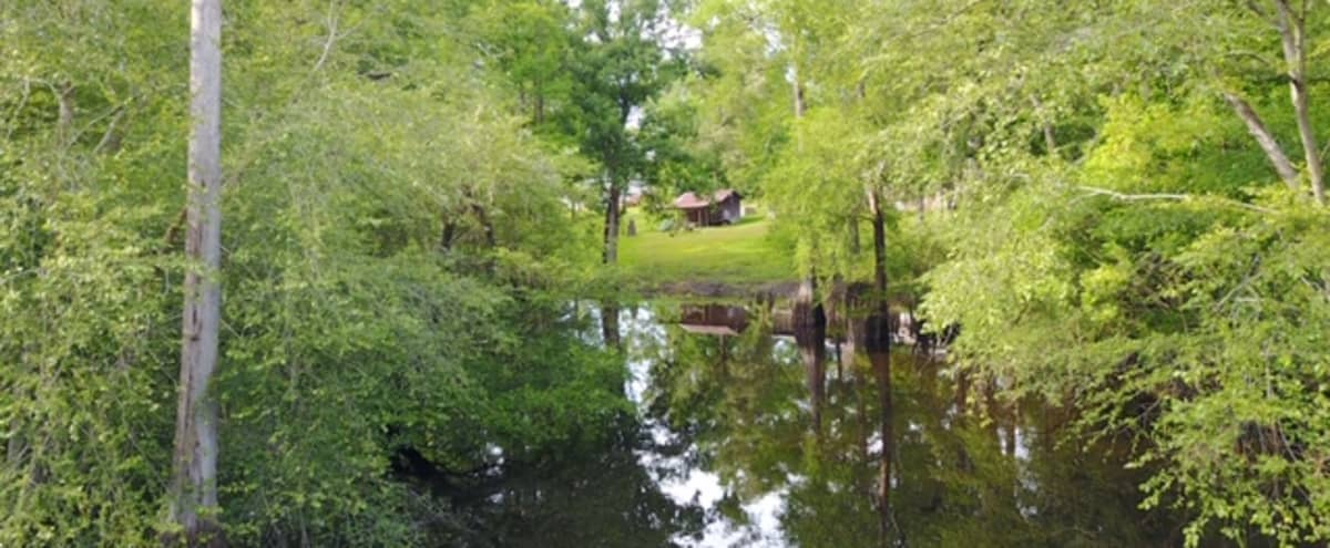 Waterfront - brick ranch on 1.7 acres on the Black River, beautiful, southern cypress and oak scenery in Andrews Hero Image in undefined, Andrews, SC