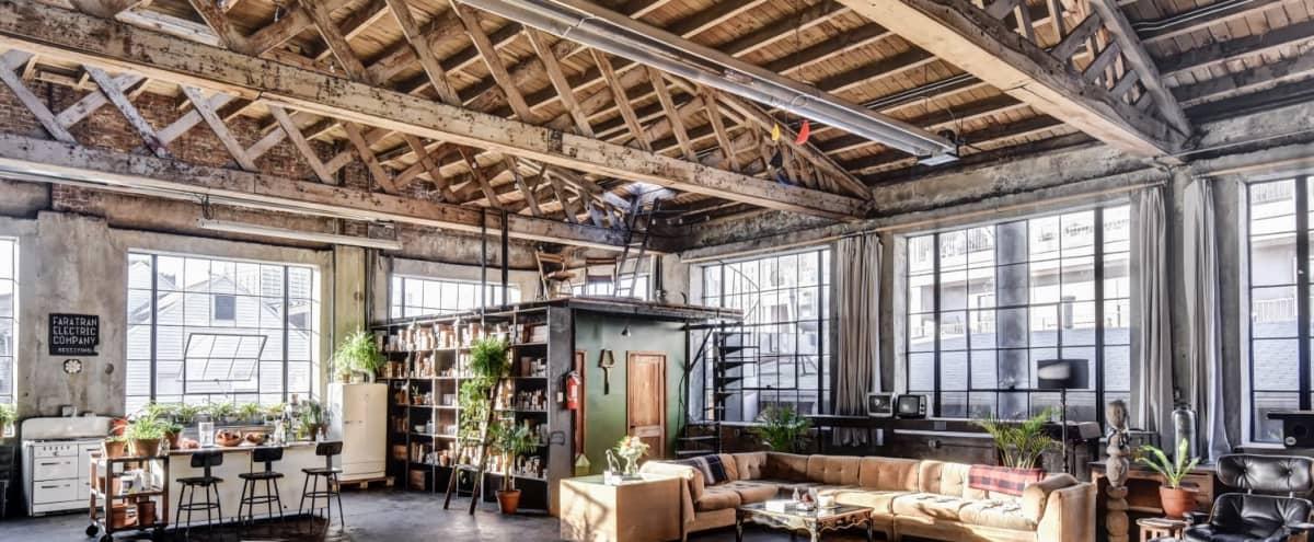 Large Sunny Industrial-Chic Loft in Newark Hero Image in North Ironbound, Newark, NJ