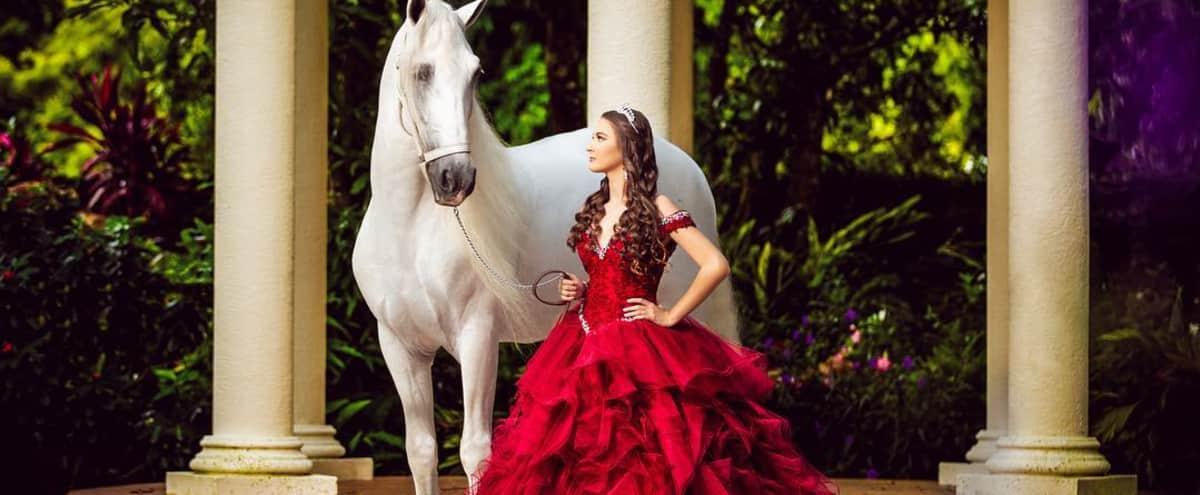 Villa Toscana Miami. Luxury Mansion, Italian Courtyard & Tropical Gardens. in Miami Hero Image in undefined, Miami, FL