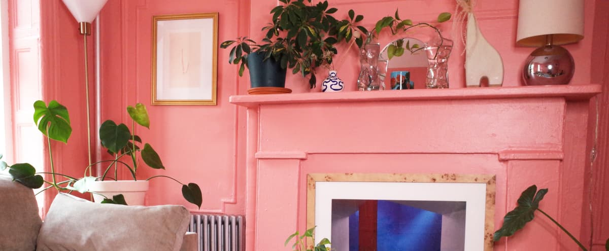 A Pink Moment in Brooklyn. Spacious, sunlit apartment with modern decor and plants. in Brooklyn Hero Image in Greenpoint, Brooklyn, NY