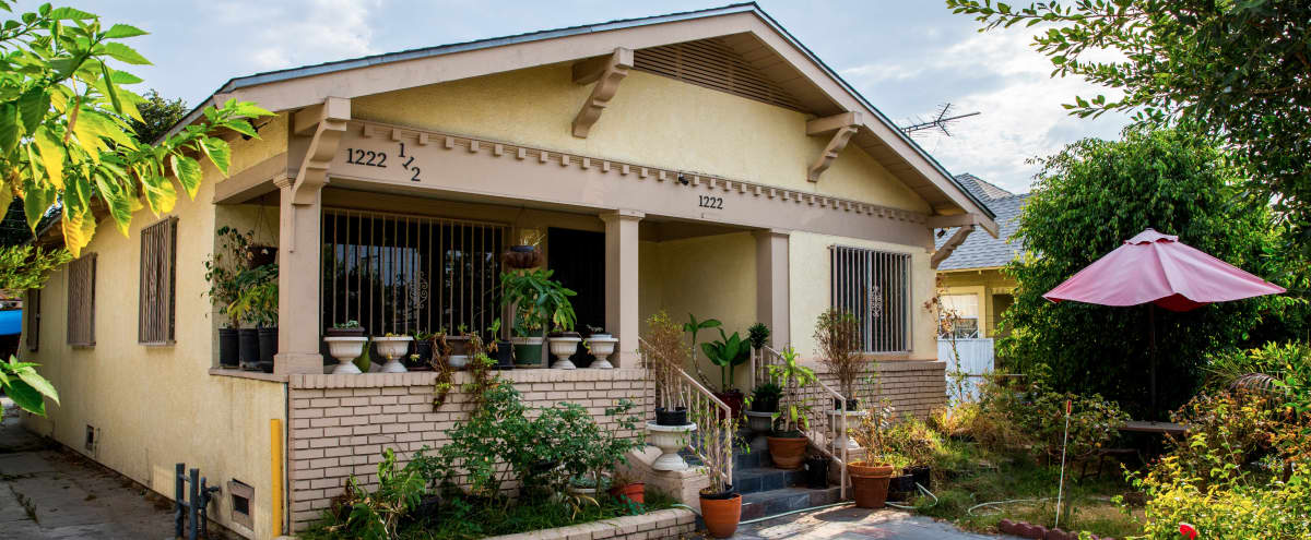 Single Private Family House with lot of natural light in Los Angeles Hero Image in South Los Angeles, Los Angeles, CA