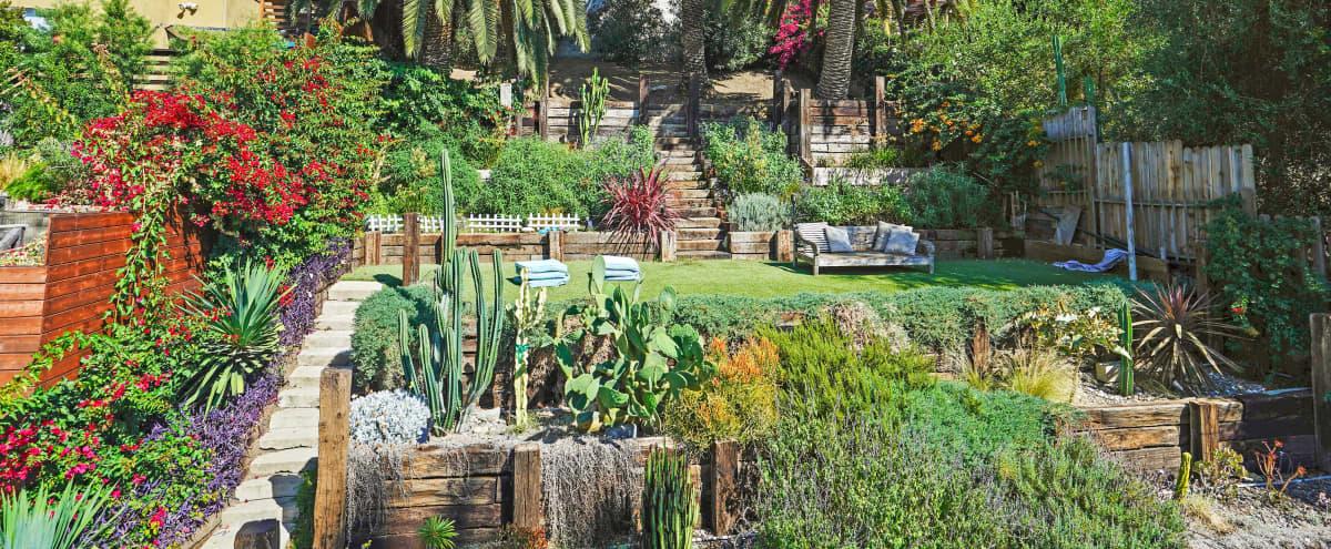 Charming Hillside Backyard in Los Angeles Hero Image in Silver Lake, Los Angeles, CA